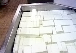 豆腐の製造工程